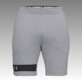 UA Men's MK-1 Terry Shorts
